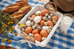 Quail eggs, more nutritious than chicken eggs Royalty Free Stock Images
