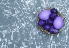 Colorful quail eggs in a nest on stone background. Royalty Free Stock Image
