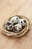 Quail eggs in the nest of hemp rope Stock Photo