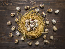 Quail eggs in a nest and laid out around it on wooden rustic background top view close up Royalty Free Stock Images