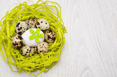 Quail eggs in nest made of straw Royalty Free Stock Photos