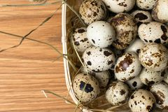 Quail eggs in a nest on a rustic wooden background. Healthy food concept. Quail eggs in a nest on a rustic wooden background. Healthy food concept Stock Photo