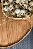 Quail eggs in a nest on a rustic wooden background. Healthy food concept. Quail eggs in a nest on a rustic wooden background. Healthy food concept Royalty Free Stock Images