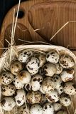 Quail eggs in a nest on a rustic wooden background. Healthy food concept. Quail eggs in a nest on a rustic wooden background. Healthy food concept Royalty Free Stock Photography