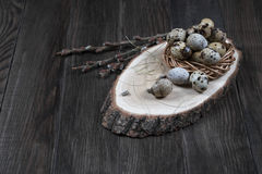Quail eggs in a nest on a rustic wooden background. Healthy food concept. Easter composition Royalty Free Stock Photography