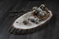 Quail eggs in a nest  and twigs of willow blossom. Easter composition with quail eggs in a nest  and twigs of willow blossom Royalty Free Stock Image
