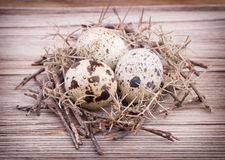 Quail eggs in nest on wooden background Royalty Free Stock Photos