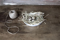Quail eggs in the nest. Quail eggs in a nest on a wooden background royalty free stock images