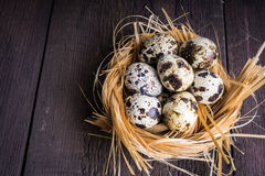 Quail eggs in nest on wooden background Stock Photography