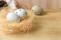 Quail eggs in the nest on a wooden background Royalty Free Stock Photography