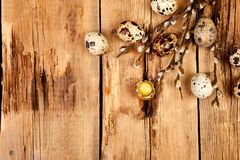 Quail eggs in the nest on wooden background with willow branch stock photography