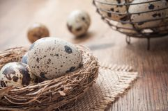 Quail eggs in nest on wooden table with metallic bask. Closeup of quail eggs in nest on wooden table with metallic basket background Stock Photo