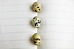 Quail eggs on notebook Stock Photography