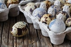 Quail eggs on old brown wooden surface Royalty Free Stock Photography