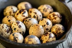Quail eggs on old brown wooden surface. Of rustic background, selective focus Stock Photo