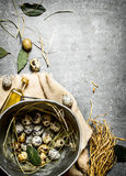 Quail eggs in an old pot and a Bay leaf. On the stone table royalty free stock photo