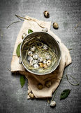 Quail eggs in an old pot and a Bay leaf. On the stone table stock image