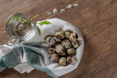 Quail eggs on an old wooden table and willow branch Royalty Free Stock Photo
