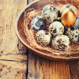 Quail Eggs with one gold royalty free stock photos