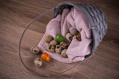 Quail eggs and one orange , green egg spilling out of basket with pink textile on wooden  background Stock Image