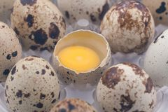Quail eggs pack Royalty Free Stock Photography