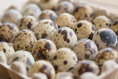 Quail eggs in package Royalty Free Stock Photo