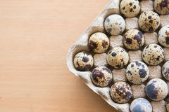 Quail eggs in package Stock Photos