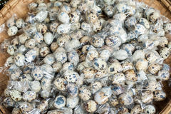 Quail eggs packed for sale at asian market Royalty Free Stock Image