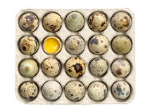 Quail eggs in paper tray Stock Photo