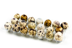 Quail eggs in a plastic bag Royalty Free Stock Image