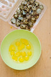Quail eggs in a plastic bowl Stock Photo