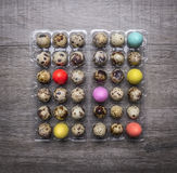 Quail eggs in a plastic container with colorful decorative eggs for Easter wooden rustic background top view close up Royalty Free Stock Photography