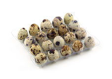 Quail eggs in plastic package  Royalty Free Stock Photo