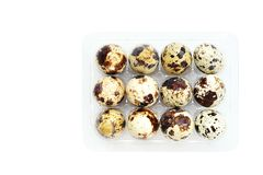 Quail eggs in a plastic tray isolated royalty free stock photo