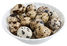 Quail eggs on a plate. Isolated on white background Stock Image