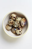 Quail eggs in plate Royalty Free Stock Images