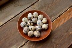 Quail eggs in plate Stock Photos