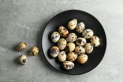 Quail eggs in plate on gray background. Space for text stock images