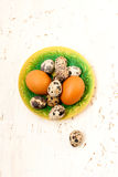 Quail eggs on a plate on a white wooden background. Easter card Stock Image