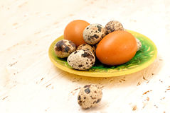 Quail eggs on a plate on a white wooden background. Easter card Royalty Free Stock Images