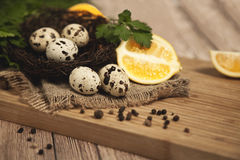 Quail eggs - Quail eggs in a ceramic bowl on old brown wooden surface background, selective focus. Top view. royalty free stock photography