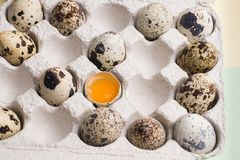 Quail eggs in random order with yolk in cardboard packaging..Vegetarian eco organic food.  stock photos