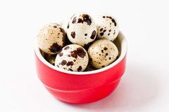 Quail eggs in a red container Royalty Free Stock Photo