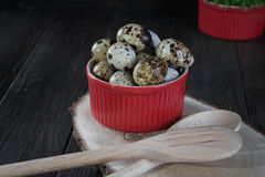 Quail eggs in red pot on dark background. Quail eggs in red pot and kitchen tools. Healthy  food concept on wooden table Stock Photo