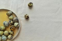 Quail eggs on a round ceramic plate. royalty free stock image