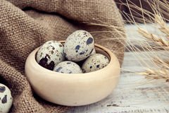 Quail eggs on rustic wooden background. Soft view Stock Image