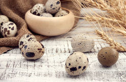 Quail eggs on rustic wooden background. Soft view Royalty Free Stock Photo