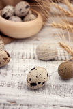 Quail eggs on rustic wooden background. Soft view Royalty Free Stock Photography
