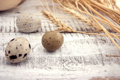 Quail eggs on rustic wooden background. Soft view. Royalty Free Stock Images