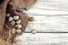 Quail eggs on rustic wooden background. Top view Royalty Free Stock Photo
